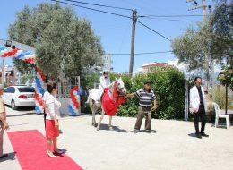 Sünnet Organizasyonu At Kiralama İzmir