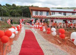 Kırmızı Halı Kiralama ve Papatya Balon Süsleme İzmir